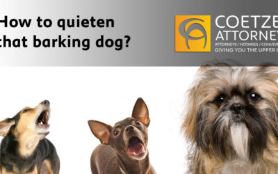 How to quieten that barking dog?